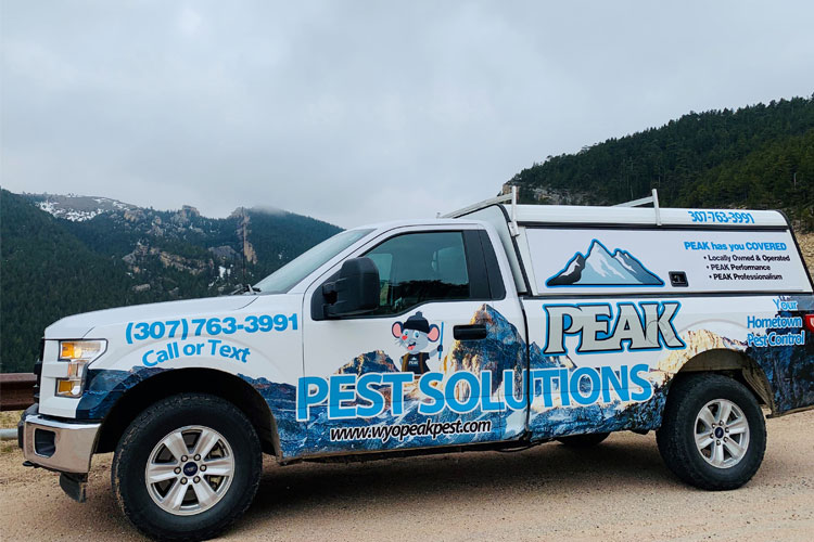 Peak-Pest-Truck-and-Mountains
